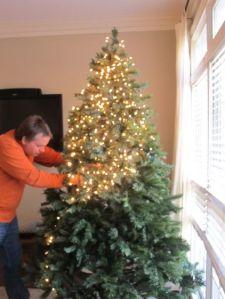 Natale, albero, luci, decorazioni